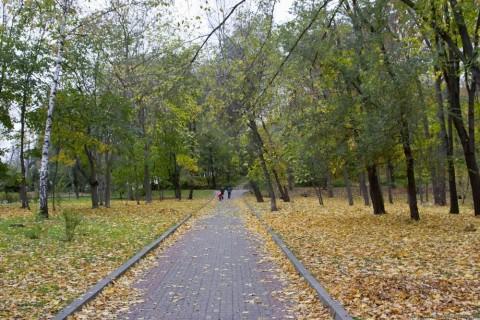 Парки Киева: парк березовая роща