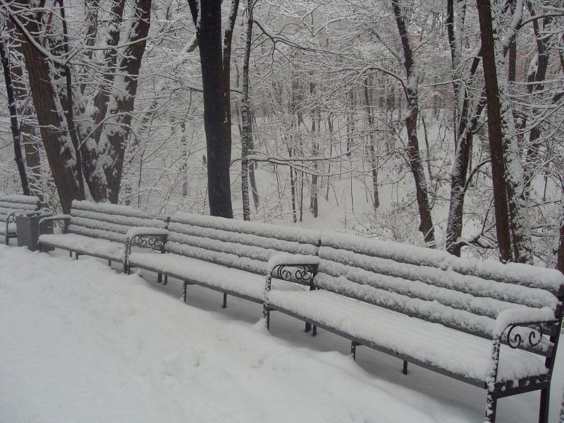 Ботсад Фомина зимой