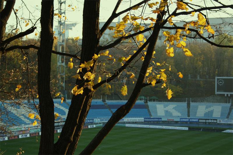 Стадион Лобановского