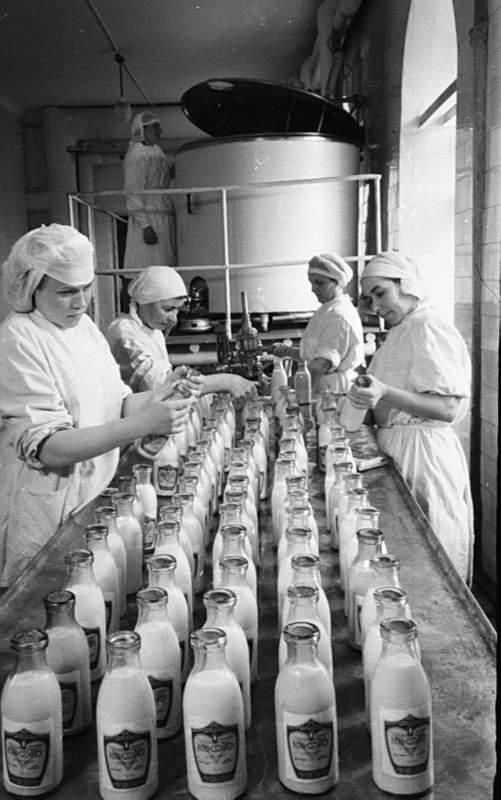 Линия по производству кефира, 1957 год