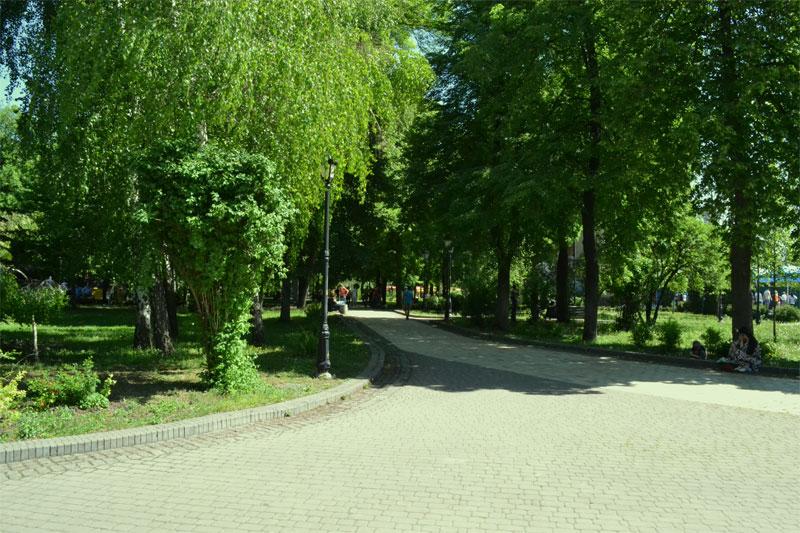 Аллея в Крещатом парке