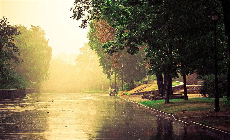 Мариинский парк после дождя