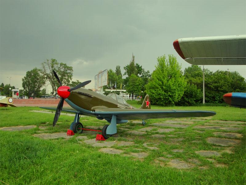 Самолет Леонида Быкова