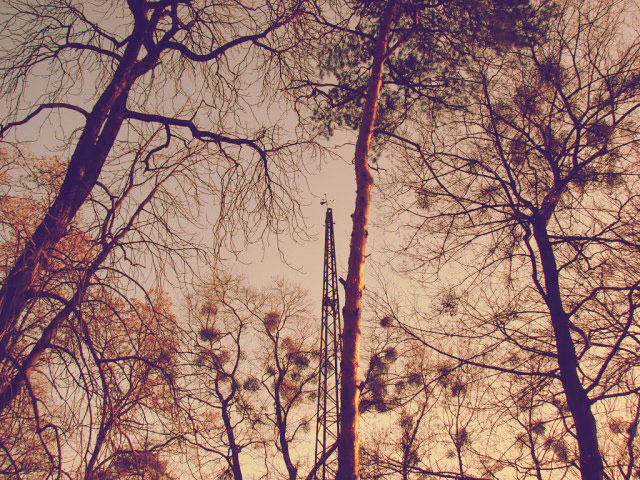 Ретранслятор сливается с деревьями