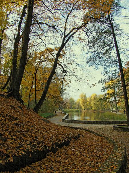 Осень на Нивках