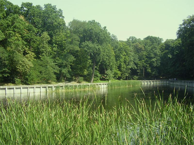 Один из водоемов в парке