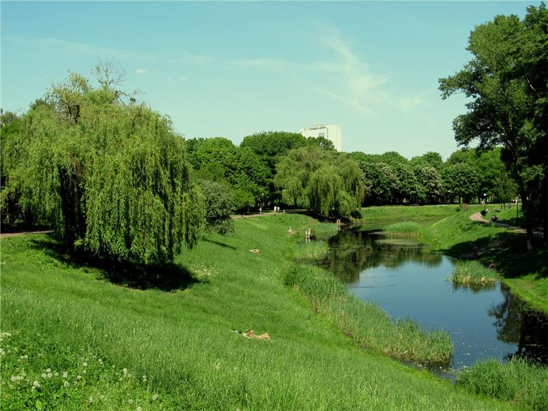 Поляна возле озера