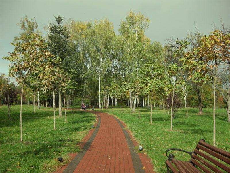 Парк Отрадный перед дождем