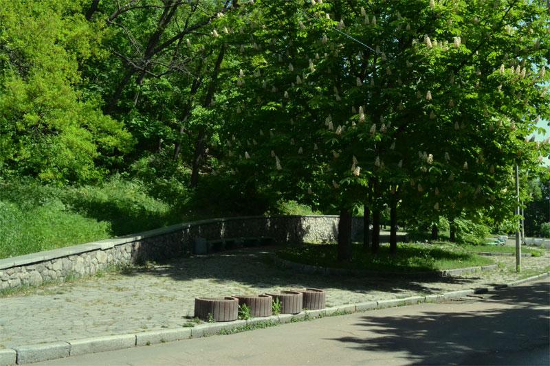Нижняя аллея парка