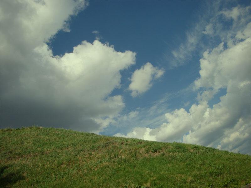 Холмы в парке