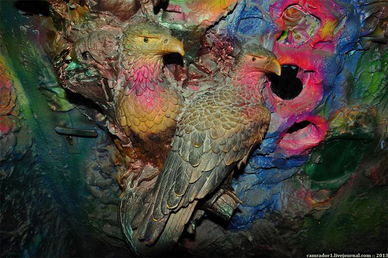 Птицы недовольны