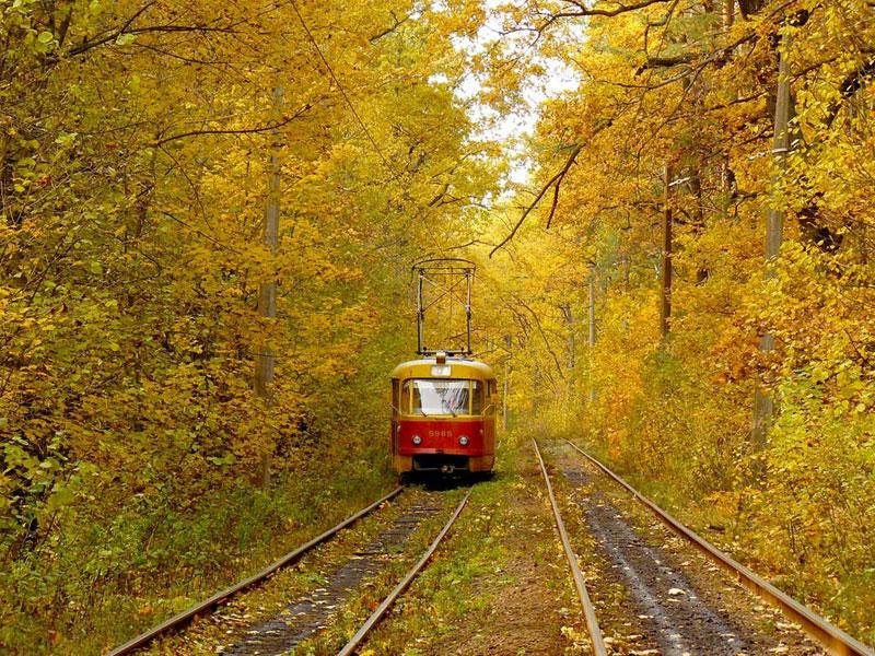 Трамвайные пути осенью