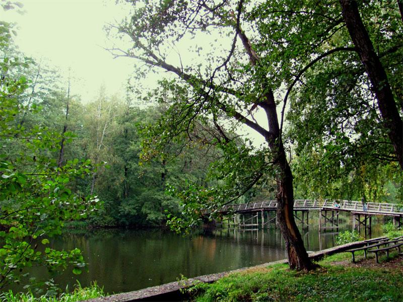 Мостик через озеро