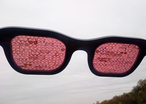 Очки состоят из 800 линз