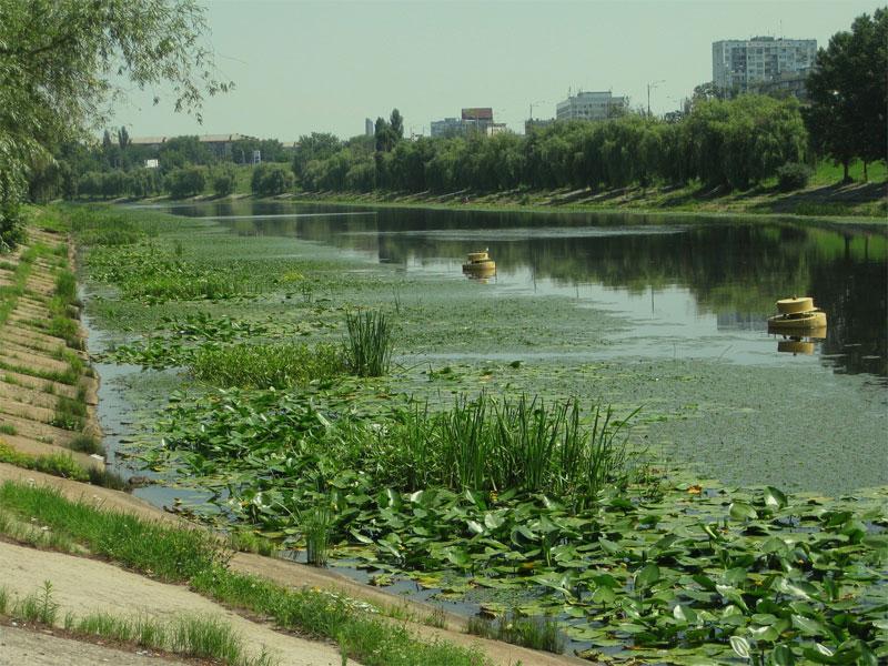 Русановский канал