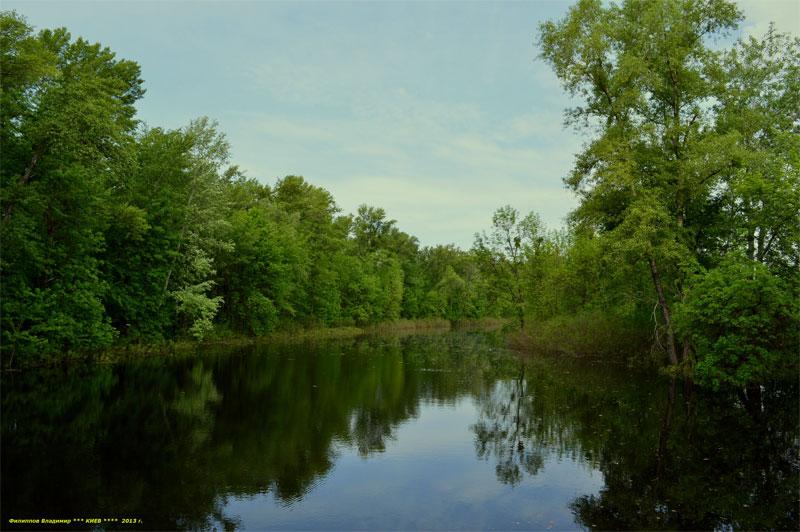 Встречаются не только это, но и болота